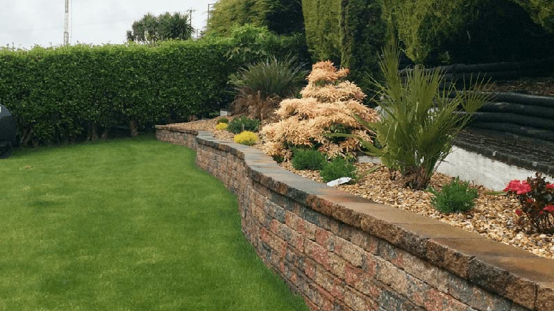 Garden wall and rockery